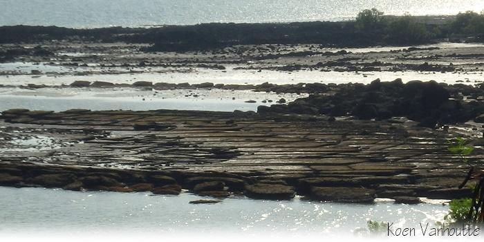 Wat heeft Steven Spielberg gemeenschappelijk met een strand in Krabi, Thailand?