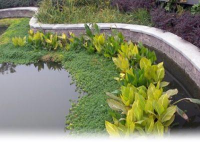 Jinan Urban Lanscaping Algen bestrijding Drijvende Eilanden