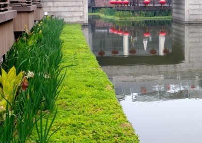 Changhai Urban Lanscaping Drijvende Eilanden 01102018 004