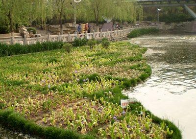 Drijvende Eilanden Yingri Lake China 02102018 005