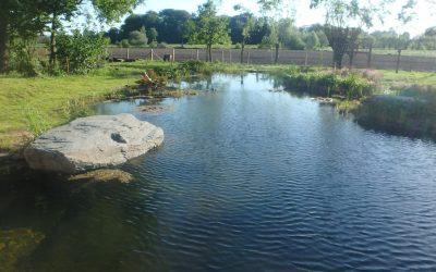 Zwemvijvers & Biozwembaden door Navicula V2.1
