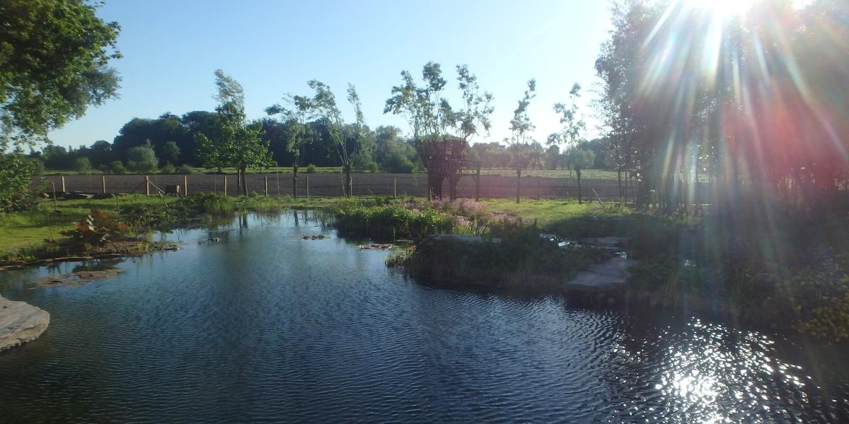 Grote natuurlijke zwemvijver ingewerkt in het achterliggende landschap.