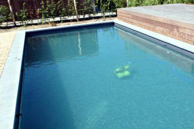 Dolphin Zwemvijverrobot, BIO M5 model, ideale partner voor krachtig zwemvijveronderhoud.