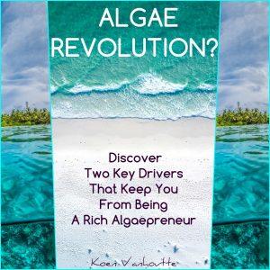 The book Algae Revolution is written by Koen Vanhoutte.